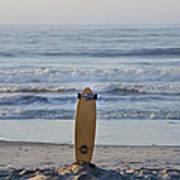 Land Surf Board Poster