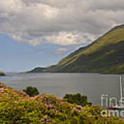 Landscape Around Killary Harbour Poster