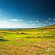 Landscape At Summer Poster