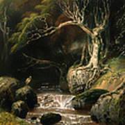 Landscape - Solitude Poster
