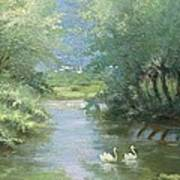 Landscape With Swans Poster