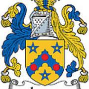 Laney Coat Of Arms Irish Poster