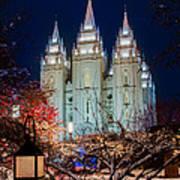 Lantern Bush Slc Temple Poster