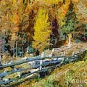 Larches In Autumn Poster