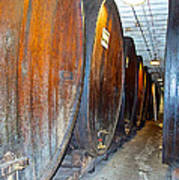 Large Barrels At Korbel Winery In Russian River Valley-ca Poster