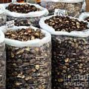 Large Sacks With Dried Mushrooms Poster