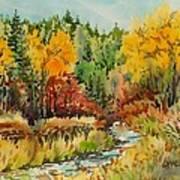Latah Creek Fall Colors Poster