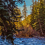 Late Afternoon Along The South Platte Poster