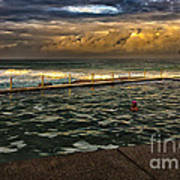 Late Afternoon Swimmer Poster