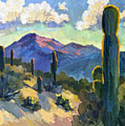 Late Afternoon Tucson Poster