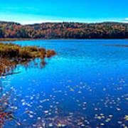 Late Autumn On Loon Lake Poster