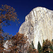 Late Light On Face Of  El Capitan Poster