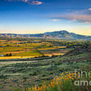 Late Spring Time View Poster by Robert Bales