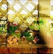 Lattuce Vine Poster