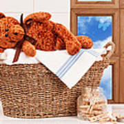 Laundry With Teddy Poster