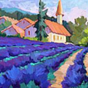 Lavender Field In St. Columne Poster
