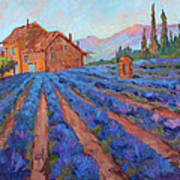 Lavender Field Provence Poster