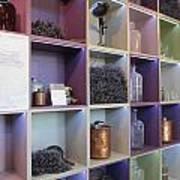 Lavender Museum Shop Poster