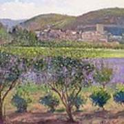 Lavender Seen Through Quince Trees Poster