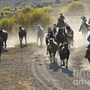 Leading Horses To Pasture Poster