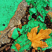 Leaf On Green Cement Poster