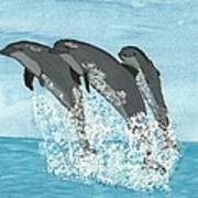 Leaping Dolphins Poster