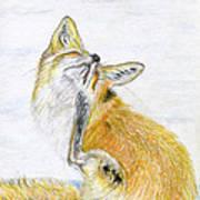 Leisure Fox Poster