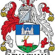 Lenaghan Coat Of Arms Irish Poster