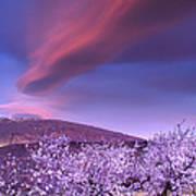 Lenticular Clouds Over Sierra Nevada Poster