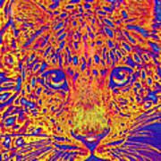 Leopard Eyes Orange Poster