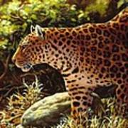 Leopard Painting - On The Prowl Poster