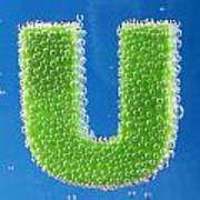 letter U underwater with bubbles Poster