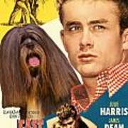 Lhasa Apso Art - East Of Eden Movie Poster Poster
