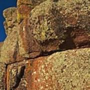 Lichen On Boulders Poster
