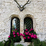 Lichtenstein Castle Windows Wall And Antlers - Germany Poster