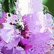 Light Pink Flower Poster