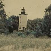 Erie Lighthouse Among The Trees Poster