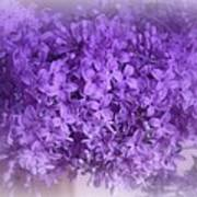Lilac Fantasy Poster