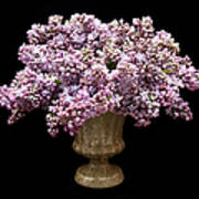 Lilacs In A Green Vase - Flowers - Spring Bouquet Poster