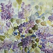 Lilacs Poster by Paula Marsh