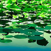 Lilly Pads Of Reelfoot Lake Poster