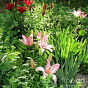 Lily Garden Poster