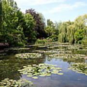 Lilypond Monets Garden Poster