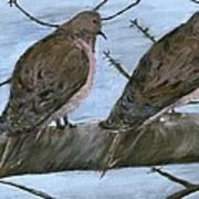 Limbirds Poster