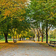 Lincoln Park In Fall Poster