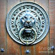 Lion Door Knocker In Norway Poster
