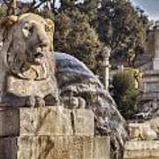 Lion Fountain In Rome Italy Poster