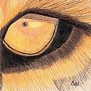 Lions Eye Poster by Bav Patel