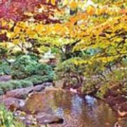 Lithia Park Ablaze With Fall Color Poster