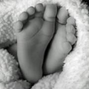 Little Feet Poster by Mamie Thornbrue